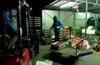 Tanie i ekologiczne zakupy
