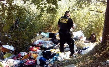 Brakuje strażników do walki ze śmieciami