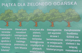 Gdańsk chce postawić na drzewa