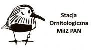 Stacja Ornitologiczna MiIZ PAN