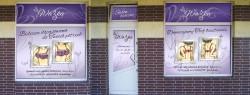 Ważka - salon bielizny damskiej