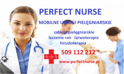 Perfect Nurse