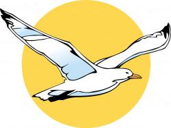 Albatros Travel