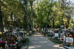 Cmentarz św. Ignacego