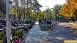 Cmentarz Witomiński Komunalny