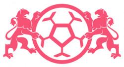 Akademia Piłkarska Lotos Gdańsk
