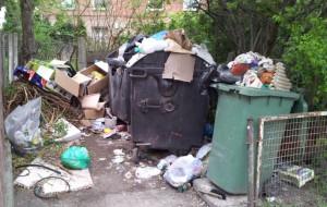 """""""Chaosu śmieciowego można było uniknąć"""""""