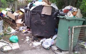 Od tygodnia walczymy ze śmieciami. Kto wygrywa?
