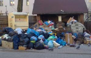 Są pierwsze kary dla firm wywożących śmieci