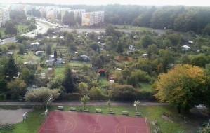 Park zamiast działek na Witominie