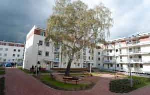 Miejskie TBS-y na Oruni przekazane mieszkańcom
