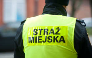 Prokuratura bada łamanie prawa w Straży Miejskiej w Gdańsku