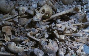 Będzie można zwiedzać piwnicę romańską z XIII w.