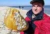 Z kaszorkiem na plażę. Jak zostać poławiaczem bursztynu?
