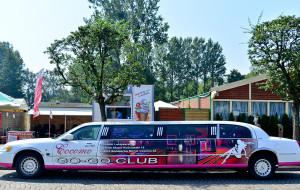Auta z reklamami podczas Red Bull Air Race. Strażnicy: nie mogliśmy interweniować
