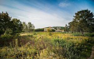 Czy w Oliwie powstanie 40-metrowy wieżowiec i nowe osiedle?