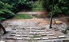 Remont Teatru Leśnego. Będzie nowa scena, widownia jeszcze poczeka