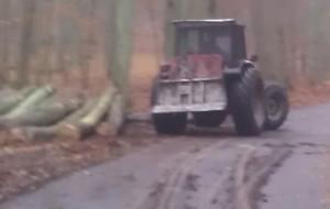 Krewki operator ładowarki nie chciał zdjęcia podczas prac w lesie