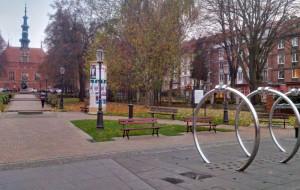 Gdańsk oświetli jedno drzewo. Koszt: kilkadziesiąt tysięcy