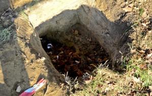 Zabrali szczątki po naszej interwencji