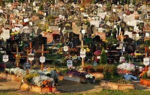 Komunikacja na cmentarzu. Jak się poruszać po rosnących nekropoliach