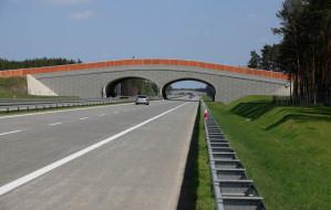 Obwodnica Metropolitalna będzie z betonu. Droga bez remontów ma wytrzymać 20 lat