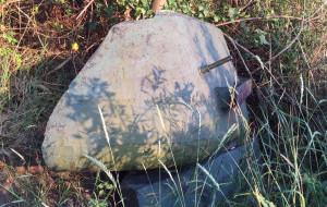 Fragment radzieckiego czołgu leży w chaszczach na Westerplatte