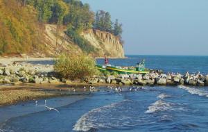 Gdynia: dźwięki z plaży, lasu i portu