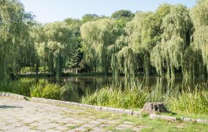 Fontanna i pomosty widokowe w Parku Oruńskim