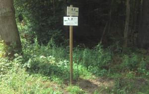 Leśne trasy rowerowe w Sopocie zostały oznakowane