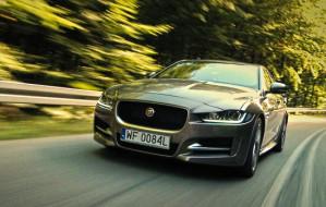Jaguar XE: brytyjski kocur klasy średniej