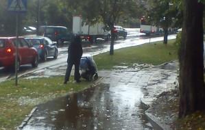 Gdynia naprawi zalewany chodnik. Kładki nie