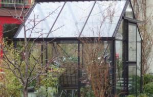 Własna szklarnia w ogrodzie. Jak i za ile?