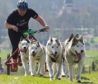 Igor Tracz zaprasza na wyścigi w bikejoringu