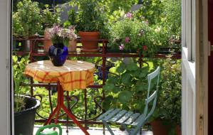 Balkony i tarasy. Dobierz rośliny do swojego trybu życia