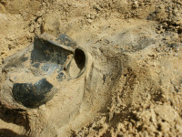 Prace archeologiczne na Wiczlinie
