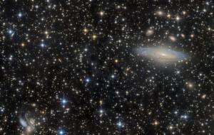 O spadających gwiazdach w Centrum Hewelianum