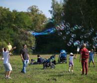 Slot: festiwal, na którym poznasz sztukę życia