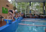 Wystartuj w pływackich mistrzostwach Polski dla amatorów