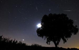 Spójrz w niebo na spadające gwiazdy