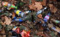 Jak pozbyć się śmieci z naszych lasów