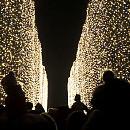 Tysiące światełek i piaskowa szopka w Oliwie