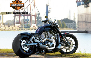 Kalendarz Harleya i nowe Suzuki Ignis