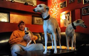 Pies też klient, czyli które lokale można odwiedzić z czworonogiem