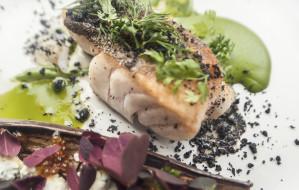 Smaki deluxe: skrei - rzadka arktyczna ryba - na polskich stołach