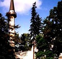 Kamieniami w meczet