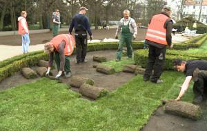 Ruszyło układanie nowych trawników w Parku Oliwskim