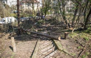 Prace w parku niepokoją mieszkańców Gdyni