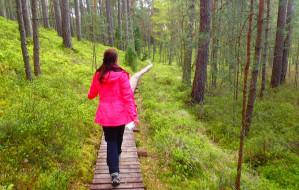 Wędrówka po Parku Narodowym Borów Tucholskich