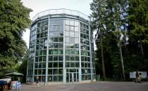 Wkrótce ruszy rozbiórka palmiarni w Oliwie